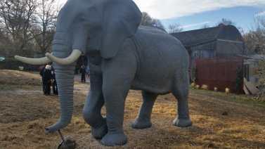 elephant sculpture swindon