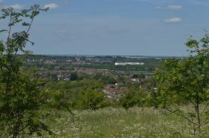 The view from Kings Wood Walk