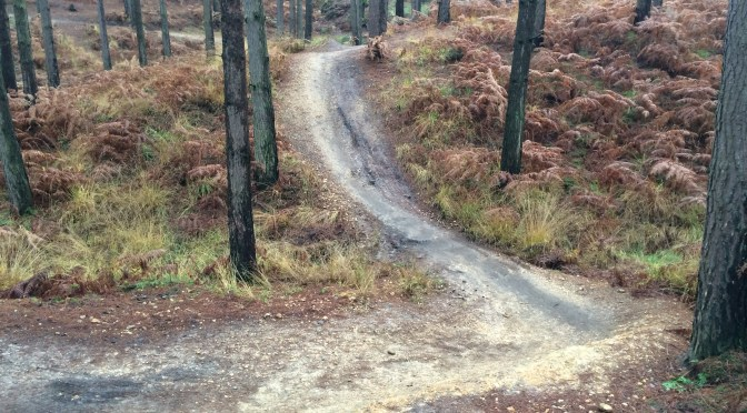 Places to ride: Swinley Forest