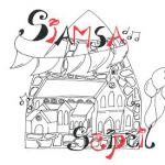 Siamsa-Seipeil