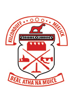 Intermediate Championship Playoff Swinford v Tourmakeady