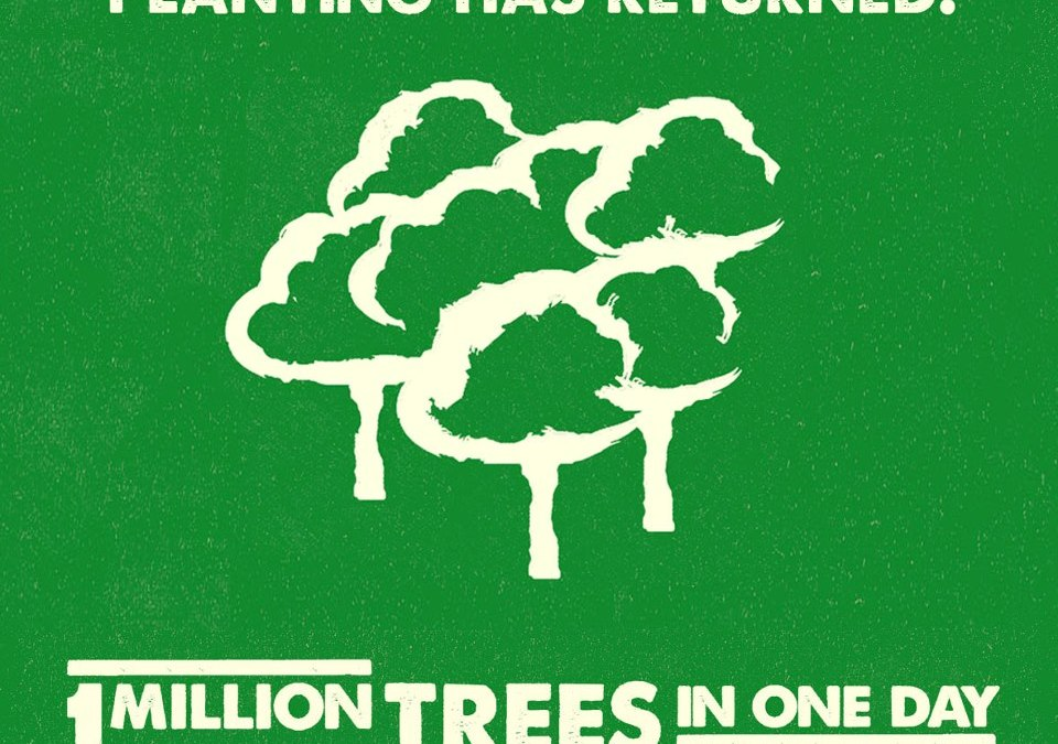 One Million Trees In One Day