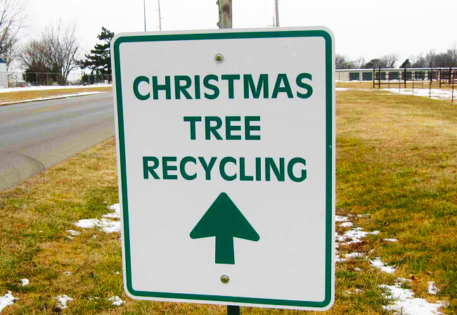 2016 Free Swinford Christmas Tree Recycling