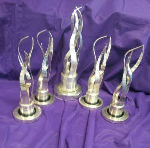 national tidy towns awards 2014
