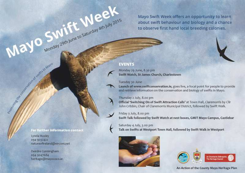 Mayo Swift Week 2015