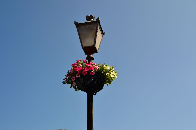 street lamp posts hanging baskets