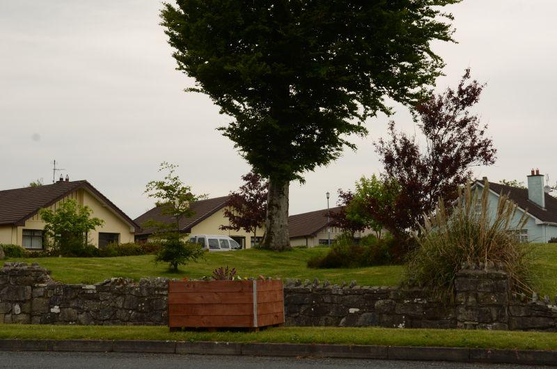 Kiltimagh road planters MAY_5177
