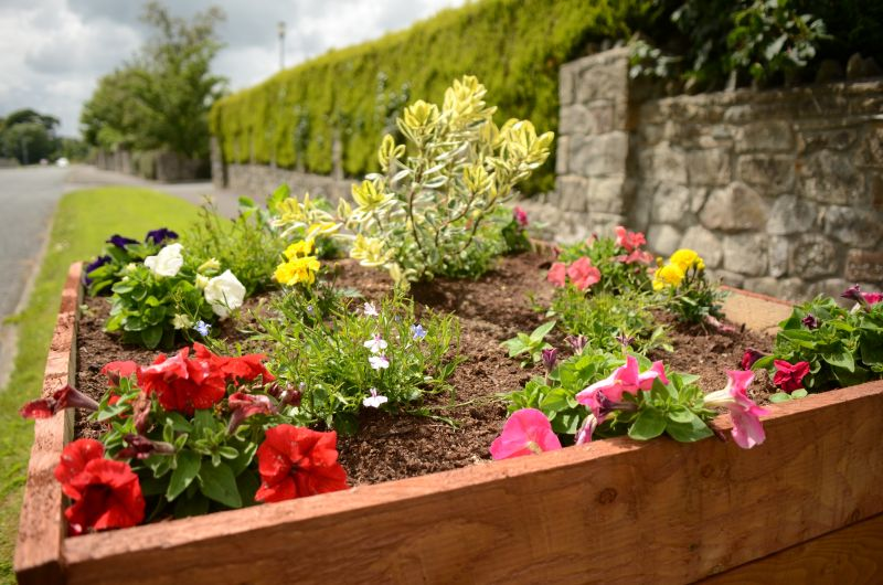 Kiltimagh road planters MAY_5837