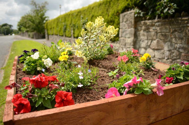 Kiltimagh road planters