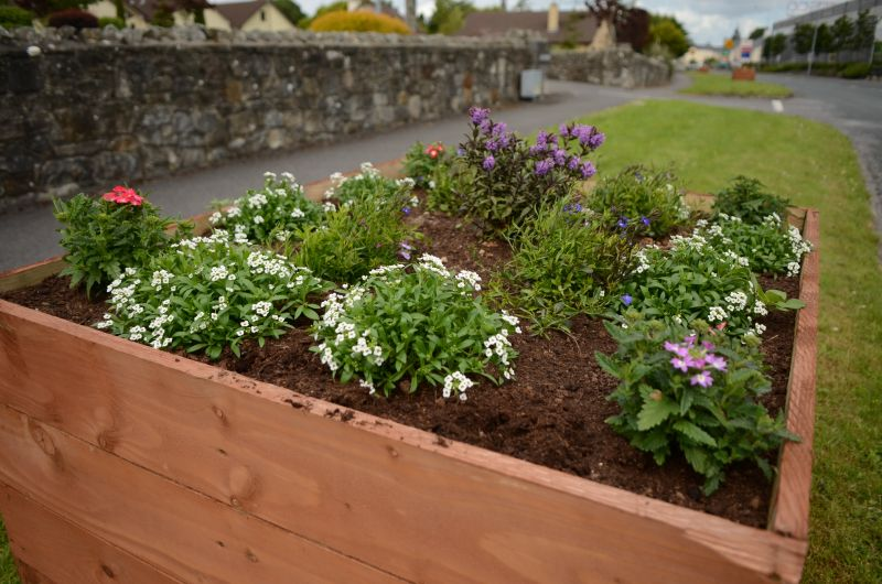 Kiltimagh road planters MAY_5840