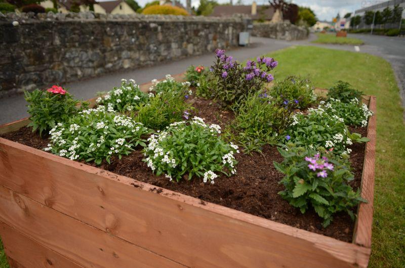 Kiltimagh road planters MAY_5840