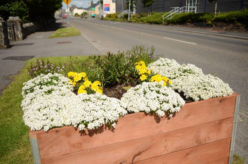 Kiltimagh road planters MAY_6586