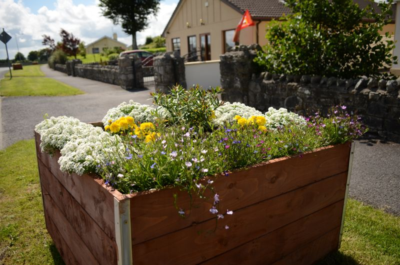 Kiltimagh road planters MAY_6587