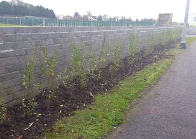 Swinford Amenity Park Wall