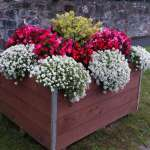 swinford-planters-blooming-2016-