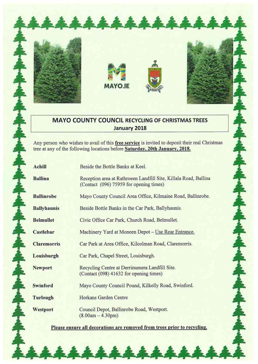 Christmas tree recycling in Swinford in 2017