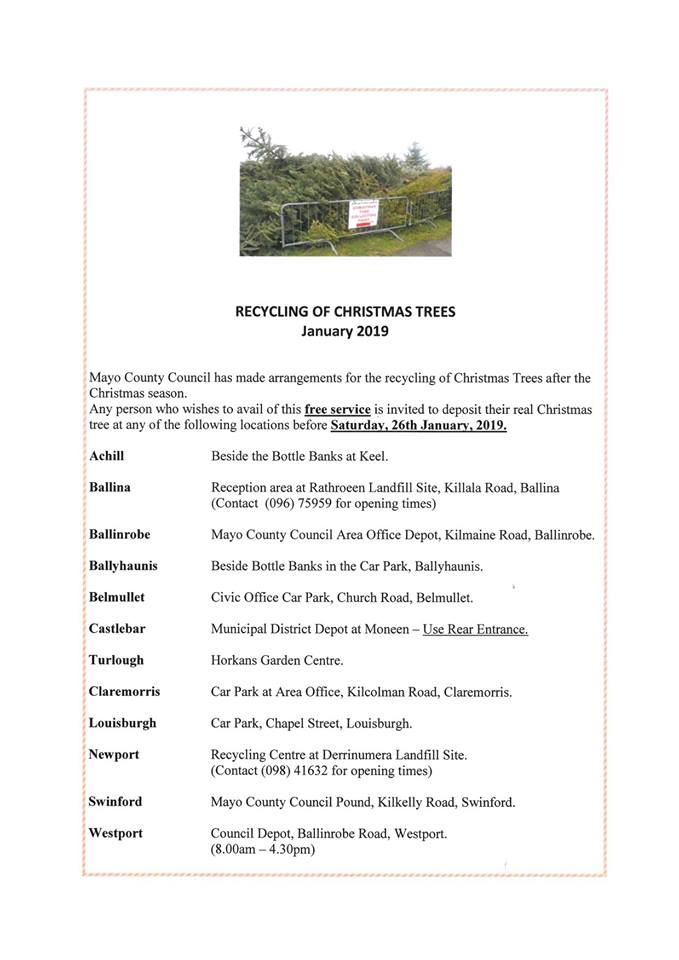 Christmas tree recycling in Swinford 2019 poster
