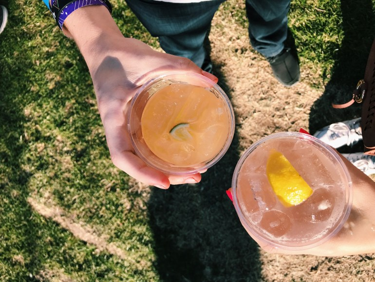 Drinks at McDowell Mountain Music Festival (M3Fest)