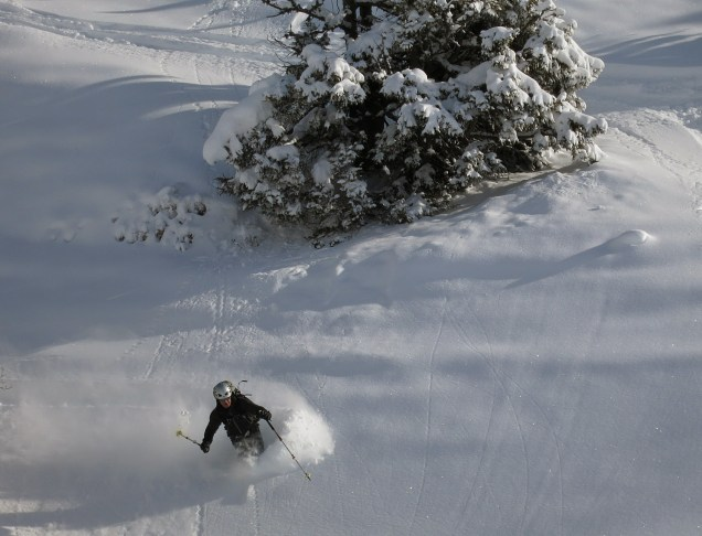 Skiing in the trees