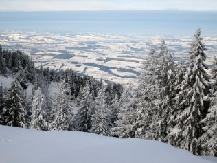 View towards Lake Zurich