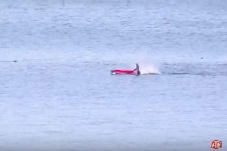 ホオジロザメがカヤックを襲撃、海に投げ出された男性の動画がヒヤヒヤもの