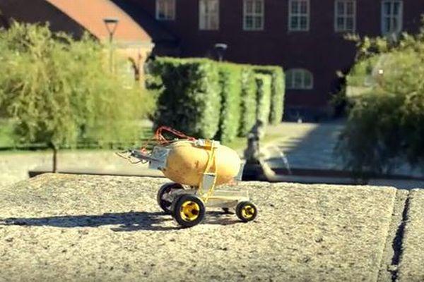 世界初、ジャガイモのエネルギーにより自動で動く「ポテト・カー」がユニーク
