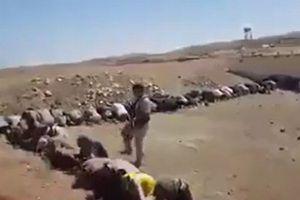 お金もなく食べ物も尽き…イラクのIS戦闘員、数百人が一斉に投降