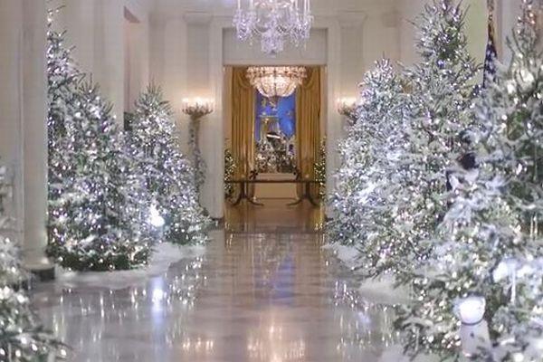 用意されたツリーは53本、ホワイトハウスのクリスマス用デコレーションが豪華