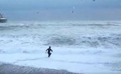 愛犬が沖へ流され、救助に向かった飼い主も波に飲まれ…果たして両者の運命は?