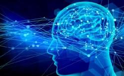 スタンフォード大研究者ら、患者の死期を予測できるAIアルゴリズムを開発