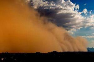 激しい砂嵐がインドを直撃、木々や家屋を倒壊させ125名以上が死亡