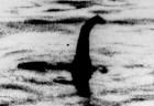 ネッシーの正体が明らかになるか?ネス湖に棲む動植物のDNA検査を開始