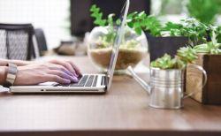 NZの企業が実験的に週4日労働を導入、生産性やパフォーマンスも向上