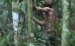 ブラジルの奥地で、少数部族の生き残りと思われる人物の姿が撮影される