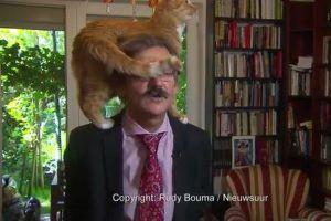インタビュー中にネコが学者の肩で尻尾をフリフリ!邪魔する姿がユニーク