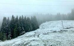 先週、熱波に襲われたのに…オーストリアなどの山沿いで降雪が観測される