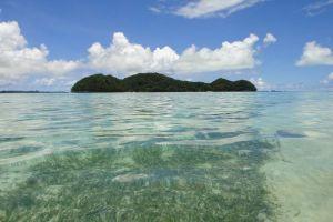 世界で初めて南国のパラオが、サンゴ礁に有害な日焼け止めの使用を禁止へ