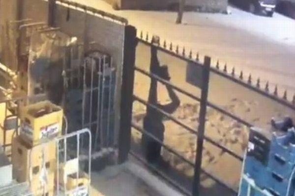 スーパーに侵入した泥棒、一晩に2度もフェンスの釘に引っかかり御用【動画】