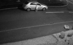 「行かないで!」捨てられた犬が飼い主の車にすがりつく映像が悲しい