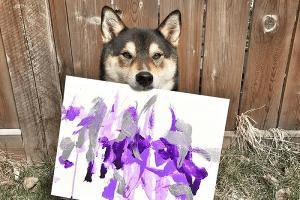 """カナダで""""柴犬画家""""が話題に、インスタフォロワー数は2万人に迫る勢い!"""