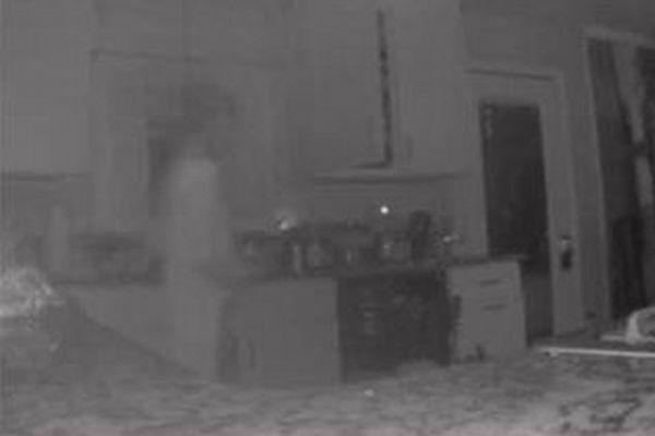 亡くなった息子の幽霊?悲しみに暮れる母親の家でカメラが透明な人影を撮影
