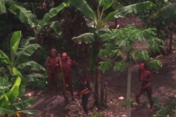 ブラジルの先住民らを死の危険にさらしたとして、米宣教師が告発される