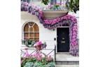 ロンドンの美しい玄関の写真、映画のワンシーンのようだとして話題に