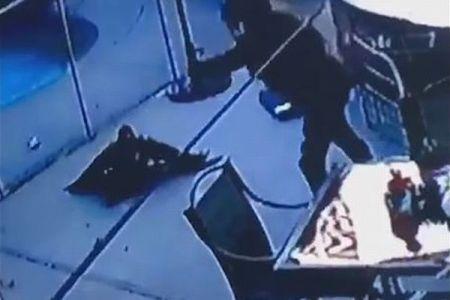 タカが舞い降り愛犬を急襲、連れ去ろうとする動画が恐ろしい