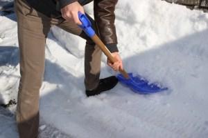 学校で大量の雪に埋まってしまったウサギ、職員の手で掘り出される
