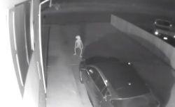 米で撮影された奇妙な映像、ハリポタの「ドビー」のような不気味な影が映っていた!