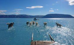 グリーンランドの氷が解けて浅い湖に…気象学者の写真に注目が集まる