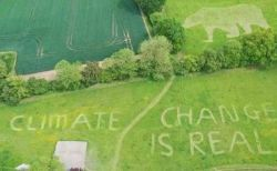 """芝生の上に男性器!英国訪問中のトランプ大統領、""""刈りこみ""""で思いがけないメッセージ受け取る"""