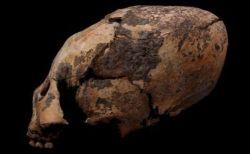 中国で発見されたエイリアンのような頭蓋骨、高い身分の人物のため人工的に作られた?