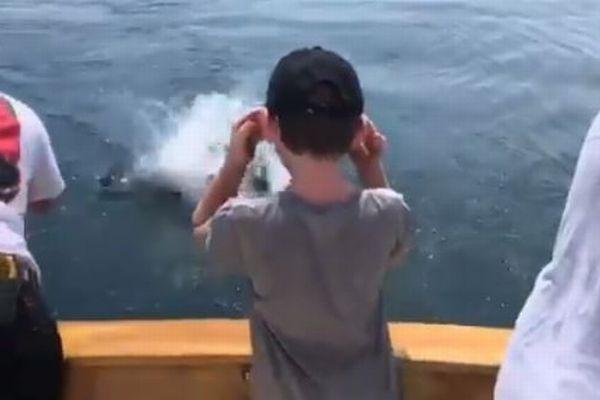 魚を釣り上げようとした瞬間、船の近くでホオジロザメがジャンプ【動画】